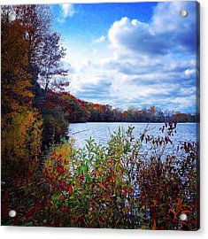 Conservation Park And Pine River In The Fall Acrylic Print