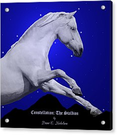 Constellation The Stallion Acrylic Print by Diane C Nicholson