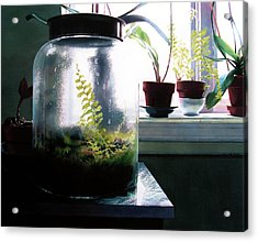 Contained Acrylic Print by Denny Bond