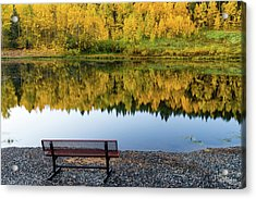 Acrylic Print featuring the photograph Contemplating The Colors Of A Colorado Autumn by John De Bord