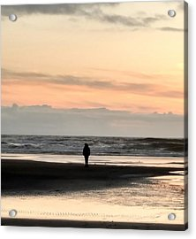 Content Acrylic Print by Frederick Messner