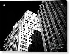 Acrylic Print featuring the photograph Contrast by John Rizzuto