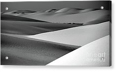 Acrylic Print featuring the photograph Contrasting Sand by Brian Spencer