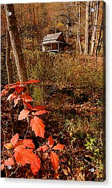 Cook Cabin Acrylic Print by Alan Lenk