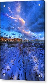 Cool Blue North Acrylic Print