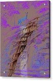 Cool Cascade Acrylic Print by Harold Shull