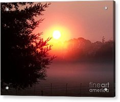 Cool Morning Acrylic Print by Erica Hanel