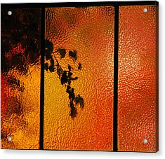 Cool Windows 1 Acrylic Print by Jean Booth