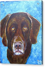 Acrylic Print featuring the painting Cooper 3 by Barbara Giordano
