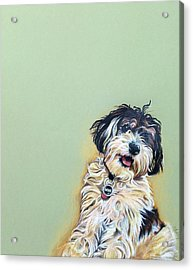 Cooper Acrylic Print by Carol Meckling