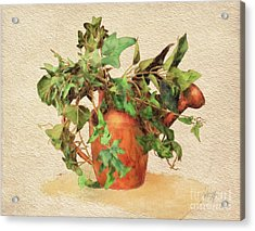 Acrylic Print featuring the digital art Copper Watering Can by Lois Bryan