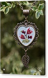 Coral Bell Pressed Flower Pendant Acrylic Print
