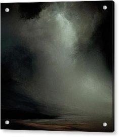 Coral - Dark Acrylic Print by Lonnie Christopher