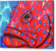 Coral Grouper Fish Acrylic Print