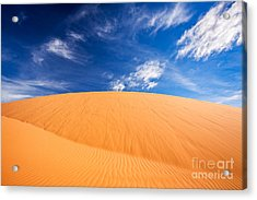 Coral Pink Sand Dunes State Park, Kanab, Utah Acrylic Print