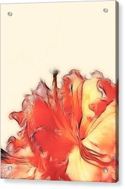 Coral Rhododendron Acrylic Print