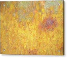 Corazon En Fuego Acrylic Print by David King