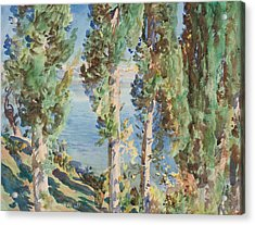 Corfu Cypresses Acrylic Print by John Singer Sargent