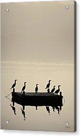 Cormorants And Dock Taunton River No. 2 Acrylic Print