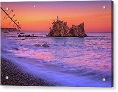 Cormorants Rock Acrylic Print