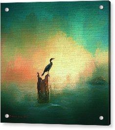 Cormorat Sunset Acrylic Print
