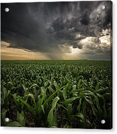 Acrylic Print featuring the photograph Corn And Lightning by Aaron J Groen