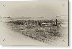 Corn Gate Rusty Acrylic Print by Wilma  Birdwell