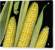 Corn On The Cob I  Acrylic Print by Tom Mc Nemar
