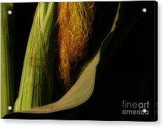 Corn Silk Acrylic Print