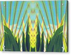 Cornfield At Sunrise Acrylic Print