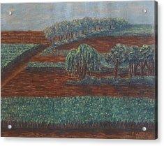 Cornfields Acrylic Print by Joann Renner