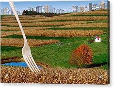 Cornfields With City Acrylic Print