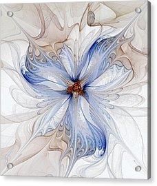 Cornflower Blues Acrylic Print