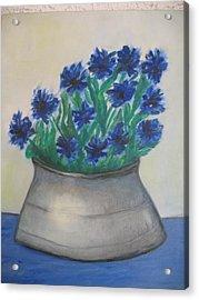 Cornflower Acrylic Print by Maria  Kolucheva
