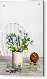 Cornflowers Acrylic Print by Amanda Elwell