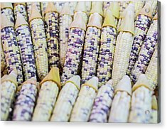 Corns  Acrylic Print by Jingjits Photography