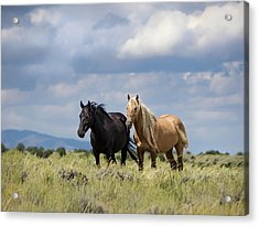 Acrylic Print featuring the photograph Corona And Em Of Sand Wash Basin by Nadja Rider