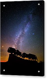 Acrylic Print featuring the photograph Cosmic Caprock Bison by Stephen Stookey