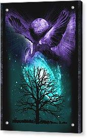 Cosmos Acrylic Print