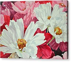 Cosmos Up Close Acrylic Print