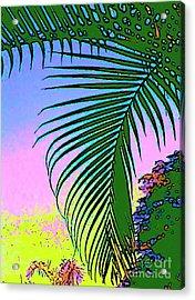 Costa Rica Palm Acrylic Print by Lisa Dunn
