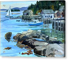 Costal Maine Acrylic Print by Michael McDougall