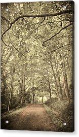 Cosy Path Acrylic Print by Svetlana Sewell
