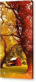 Cosy Shed Acrylic Print by Svetlana Sewell