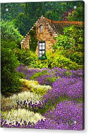 Cottage Amidst The Lavender Acrylic Print