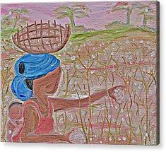 Cotton Balls Acrylic Print by Carmen  Jackson