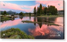 Cotton Candy Skies Acrylic Print