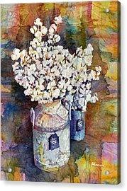 Cotton Stalks Acrylic Print