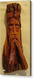 Cottonwood Bark  Wood Spirit Acrylic Print by Russell Ellingsworth