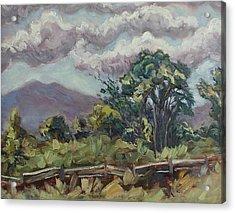 Cottonwoods At The Ranch Acrylic Print by Zanobia Shalks